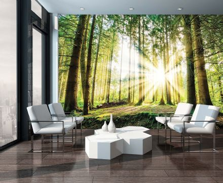 Non-woven wallpaper mural Green Forest